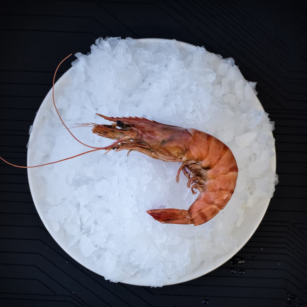 crustaces-Gambas Royal
